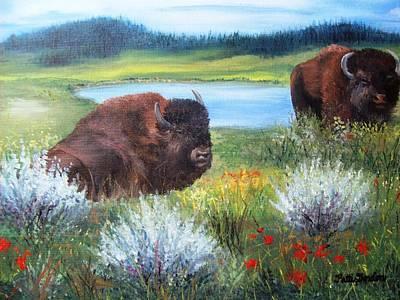 Buffalo Repose  Art Print by Patti Gordon