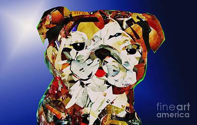 Bull Dog Original