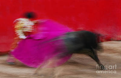 Art Print featuring the photograph Bull Fighter - Mexico by Craig Lovell