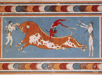 Minoan Photograph - Bull-leaping Fresco From Minoan Culture by Photo Researchers
