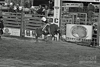 Photograph - Bull Rider by Shawn Naranjo