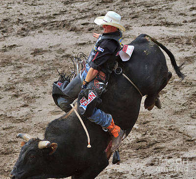 Bull Riding Photograph - Bull Riding by Louise Heusinkveld