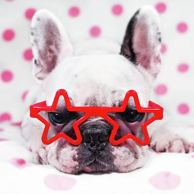 Bulldog With Star Glasses Art Print by Retales Botijero