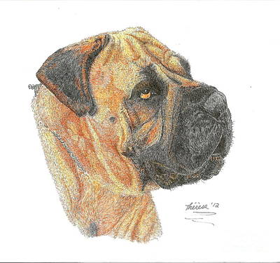 Drawing - Bullmastiff by Bill Hubbard