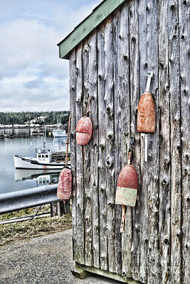 Photograph - Buoy Oh Buoy by Traci Cottingham