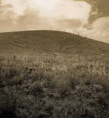 Photograph - Burned Forest by Scott Sawyer
