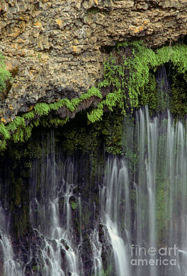 Photograph - Burney Falls - California by Craig Lovell
