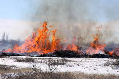 Photograph - Burning The Brush Pile by Shawn Naranjo