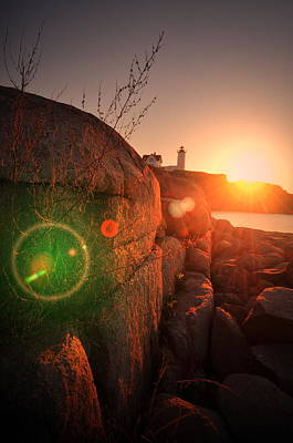 Photograph - Burst Of Nubble by Emily Stauring