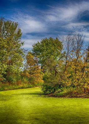 Hamptons Digital Art - Busch Wildlife Swampy Autumn by Bill Tiepelman