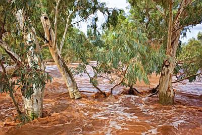 Bush Flood Art Print