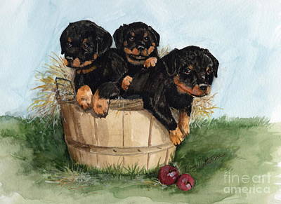 Painting - Bushel Of Rotty Pups  by Nancy Patterson