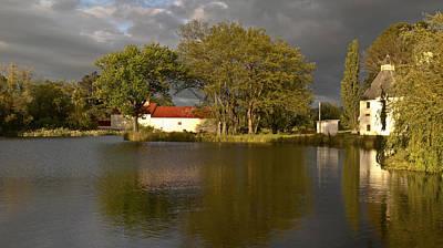 Photograph - Bushy Park Panorama by Odille Esmonde-Morgan