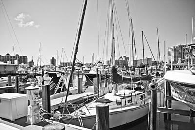 Bayfront Park Photograph - Busy by Betsy Knapp