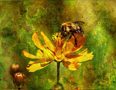 Digital Art - Busy Busy Honey Bee by J Larry Walker