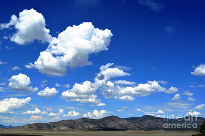 Photograph - Butte Valley Nevada by Afroditi Katsikis