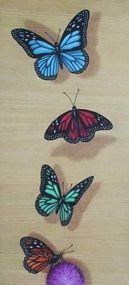 Fling Drawing - Butterflies by Joe Christensen