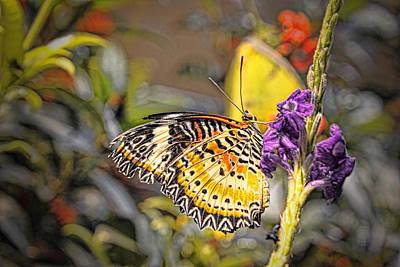 Butterfly 3 Art Print by Nathan Firebaugh