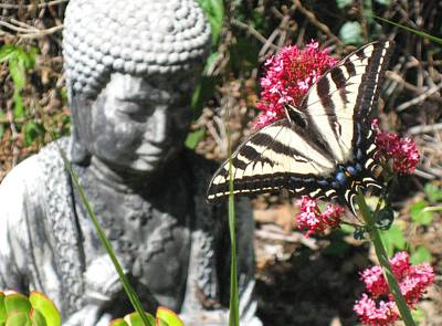 Print featuring the photograph Butterfly And Buddha by Sue Halstenberg