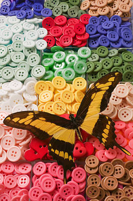 Butterfly And Buttons Art Print by Garry Gay