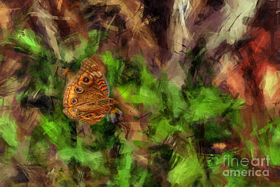 Photograph - Butterfly Camouflage by Dan Friend