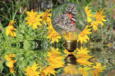 Reflection Photograph - Butterfly In A Bulb II - Landscape by Shane Bechler