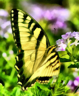 Art Print featuring the painting Butterfly by Lynne Jenkins