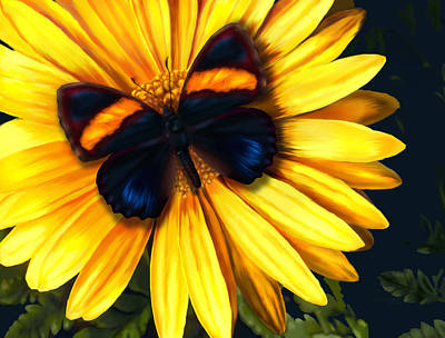 Digital Art - Butterfly On Yellow by Virginia Palomeque