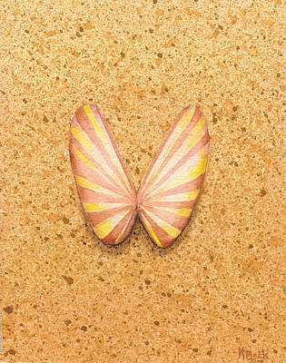 Butterfly Sea Shell Art Print