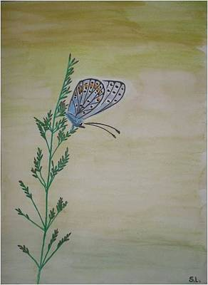 Butterfly Art Print by Silvia Louro