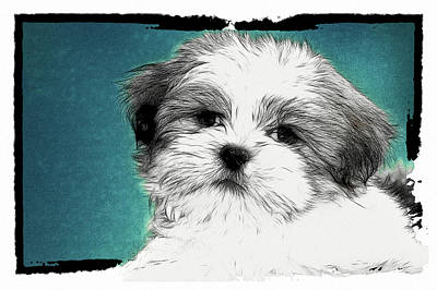 Puppies Digital Art - Button Nose by Tilly Williams