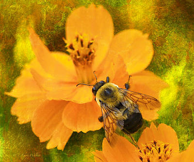 Digital Art - Buzzy The Honey Bee by J Larry Walker