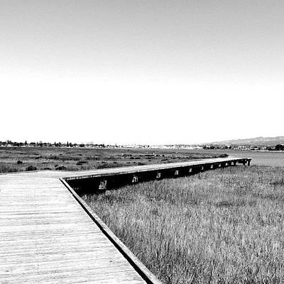 Marsh Photograph - #bw #blackandwhite #landscape #marsh by Tammy List