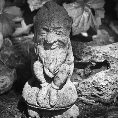 Good Luck Photograph - Bw Garden Gnome Squared by Teresa Mucha