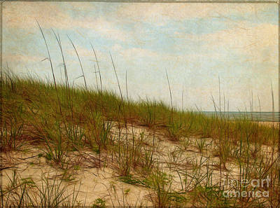 By The Sea Art Print by Judi Bagwell