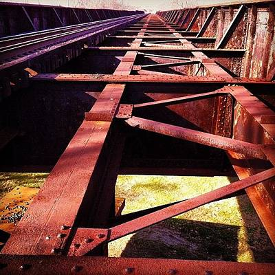 Metal Wall Art - Photograph - By The Train Tracks by Abril Andrade Griffith