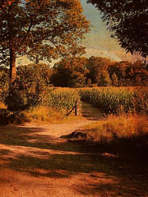 Photograph - Bye Bye Summer Hello Autumn 2 by Nop Briex