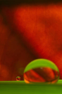 Photograph - C Ribet Orbscape Le Petit by C Ribet