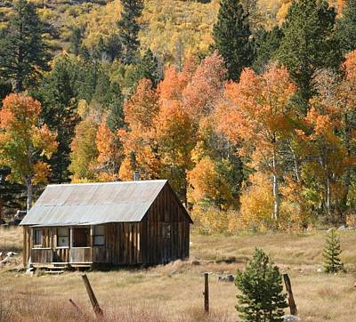 Cabin In Autumn Art Print