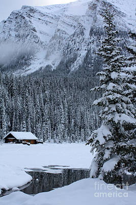 Photograph - Cabin In The Snow by Alyce Taylor