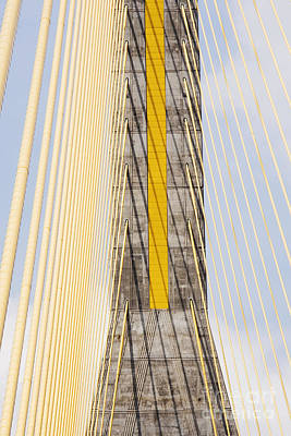 Cables And Tower Of Cable Stay Bridge Art Print by Jeremy Woodhouse