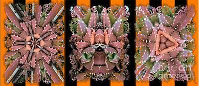 Kaleidescope Digital Art - Cactri by Ron Bissett