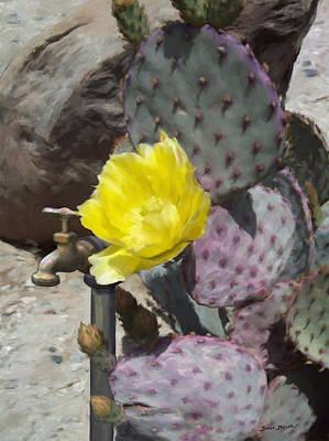 Cactus Flower 2 Original