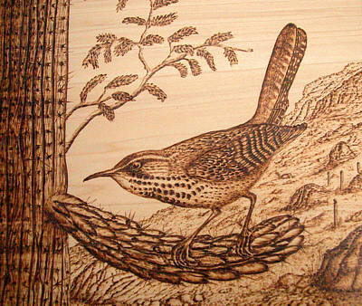 Pyrography Pyrography - Cactus Wren by Susan Rice