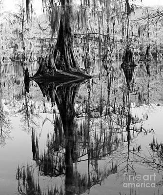 Caddo Lake 4 Art Print