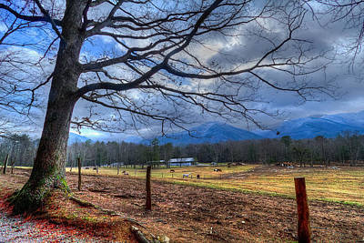 Photograph - Cades Cove Lane by Debra and Dave Vanderlaan