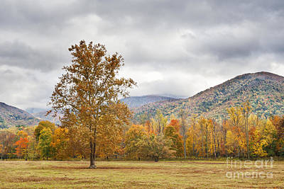 Photograph - Cade's Cove - Mountain Landscape by Cheryl Davis