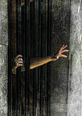 Caged 3 Art Print by Jill Battaglia