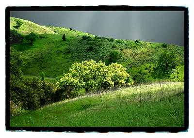 Calabasas Meadow After The Storm Art Print by Noah Brooks