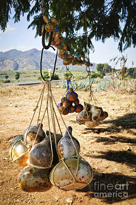 Calabash Gourd Bottles In Mexico Art Print by Elena Elisseeva